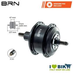 Rear stroke engine 250W MOD BRN - 1