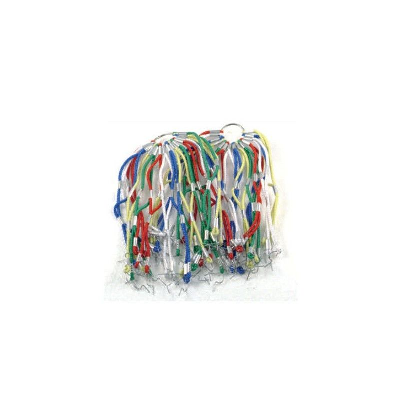 Network in elastic harlequin  - 1