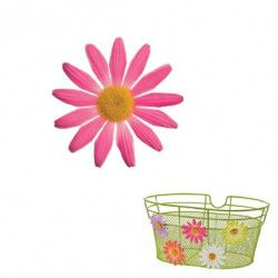 Small Pink Daisy Flower