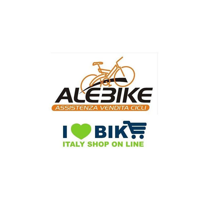 ALEBIKE low ilovebike