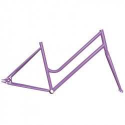 "Steel frame fixed lilac woman measuring 46 fork with 1 ""threaded"