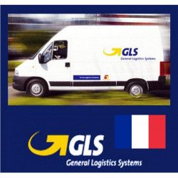 Shipping goods with courier FRANCE